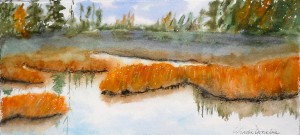 Autumn Reflection #1 - Watercolour, 5x11.25 inches, 2012 FRAMED $140
