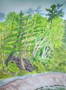 View on Muskoka River Trail Watercolour and Graphite - 15x11, 2011 $190