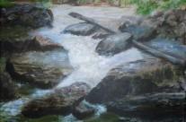 3615 – Beaver Creek on Covered Bridge Trail