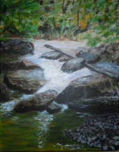 3615 - Beaver Creek on Covered Bridge Trail, Acrylic on canvas, 10 x 8 Copyright Wendie Donabie
