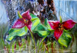 2013-27 Trillium Twosome, Acrylic on Canvas, 5 x7, Copyright Wendie Donabie 2013