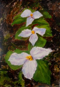 2013-32 Trillium Trio, Acrylic on Canvas, 7 x 5, copyright Wendie Donabie 2013
