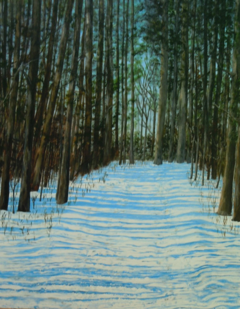 2013-40 Memories of Walks in Winter Woods, Acrylic on Canvas, 30 x 24 ins, Copyright Wendie Donabie 2013