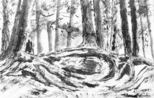3646 - Firmly Rooted - Contentment, Chinese Ink on Watercolour Paper,11 x 15 inches, Copyright Wendie Donabie