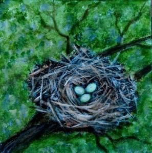2014-16 Nesting #1