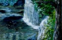 3655 – Hidden Falls