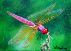 2014-20 Dragonfly #3, Acrylic on Canvas, 5 x 7 inches, Copyright Wendie Donabie 2014