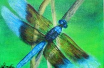 2014-21 Dragonfly #4
