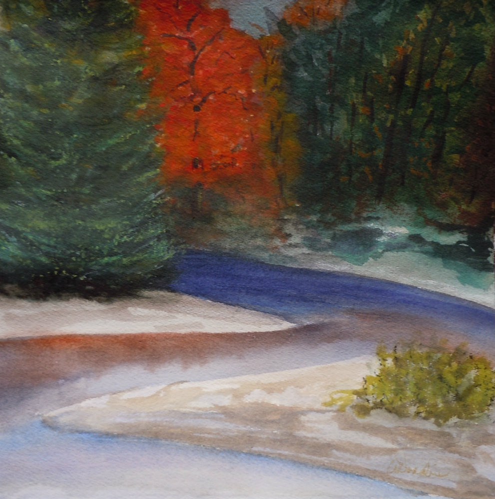 2013-11 Maple Ablaze Watercolour, Soft Pastel 10.25 x 10.5, Copyright Wendie Donabie
