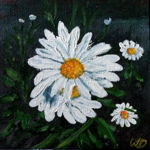 3685 - Daisy #1, Acrylic on Canvas, 6 x 6 inches, Copyright Wendie Donabie