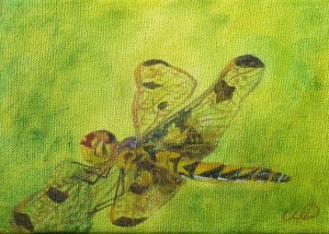 3690 - Dragonfly#5, Acrylic on Canvas, 5 x 7 inches, Copyright Wendie Donabie