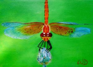 3727 - Dragonfly #9, Acrylic on Canvas, 5 x 7 inches, Copyright Wendie Donabie