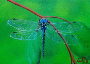 3728 - Dragonfly #10, Acrylic on Canvas, 5 x 7 inches, Copyright Wendie Donabie