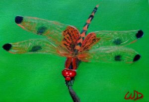 3729 - Dragonfly #11, Acrylic on Canvas, 5 x 7 inches, Copyright Wendie Donabie