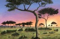 3776 – Kenyan Sunrise